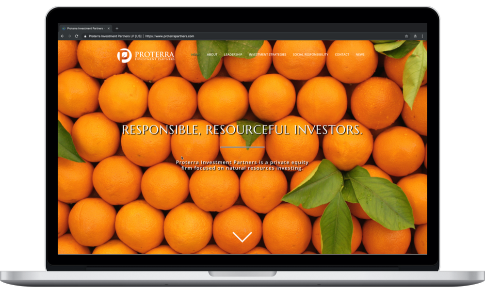 Proterra Investment Partners (laptop) - Minneapolis Web Design - Digital 1